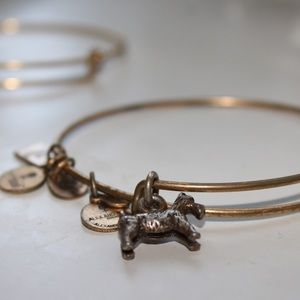 Alex and Ani dog monopoly bracelet